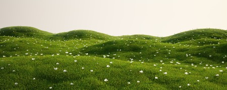 3d rendering of a green field with white flowers photo