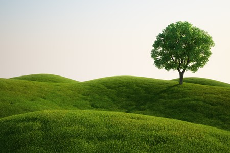 hill: 3d rendering of a green field with an elm tree