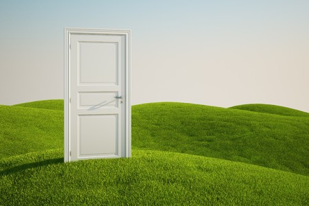3D rendering of a grass field with a door