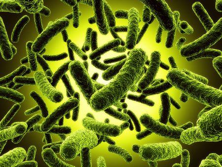 bakterien: 3D-Rendering von Bakterien