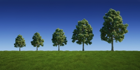3d rendering of a green field with trees getting bigger and bigger photo