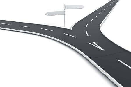 splitting: 3d rendering of a road splitting with road blank signs