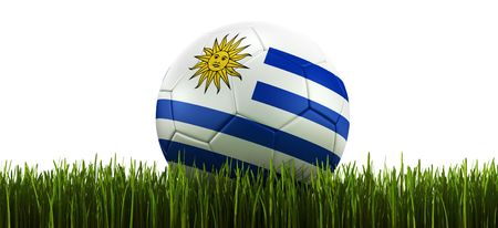 3d rendering of a Uruguayan soccerball lying in grass photo