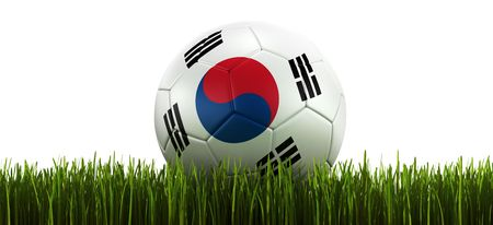 3d rendering of a South korean soccerball lying in grass photo