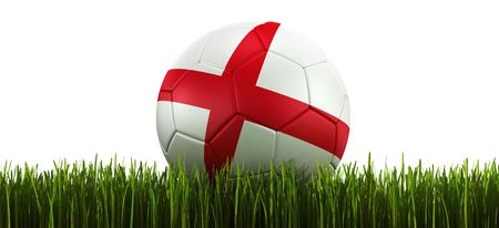 3d rendering of a English soccerball lying in grass photo