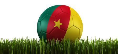 cameroonian: 3d rendering of a Cameroonian soccerball lying in grass