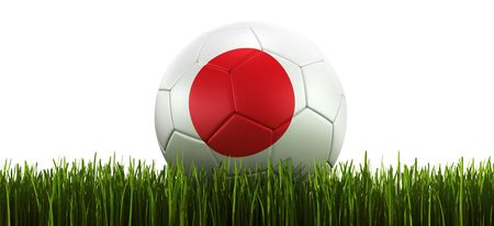 3d rendering of a Japanese soccerball lying in grass Stock Photo - 6186624