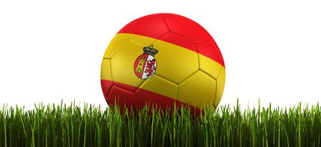 3d rendering of a Spanish soccerball lying in grass photo
