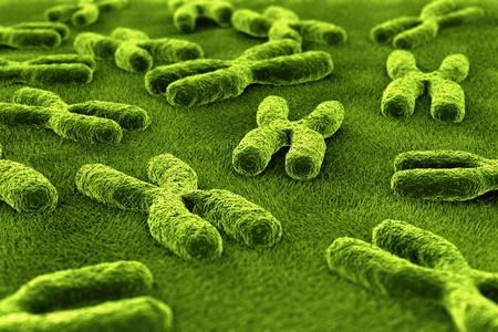 chromosome: 3d rendering of chromosomes Stock Photo
