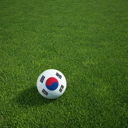 3d rendering of a South Korean soccerball lying on grass photo