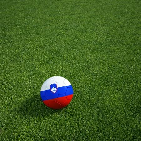 slovenian: 3d rendering of a Slovenian soccerball lying on grass Stock Photo