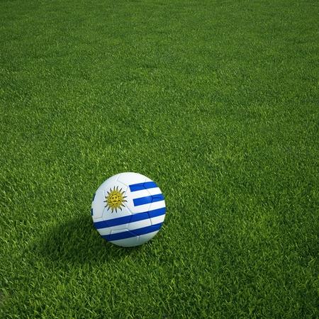 bandera de uruguay: Representación 3D de un balón de fútbol de Uruguay tumbado en la hierba Foto de archivo