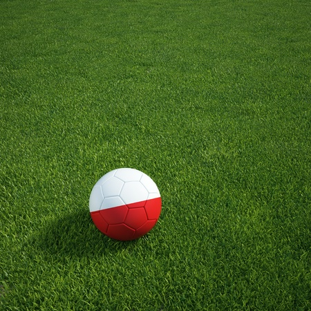 3d rendering of a Polish soccerball lying on grass Stock Photo - 12905173