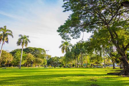 lumpini: Lumpini Park in Bangkok, Thailand
