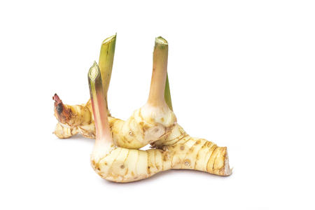 Galangal isolated on white background with clipping path