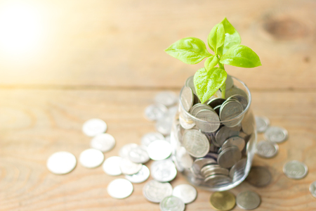 Plant growing in savings coins jar and coins on wooden table. Business growth, interest and investment concept. Stock Photo