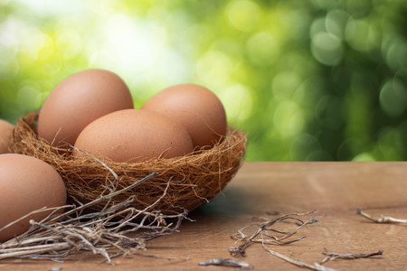 Fresh brown chicken eggs in straw on wooden table with green natural background.