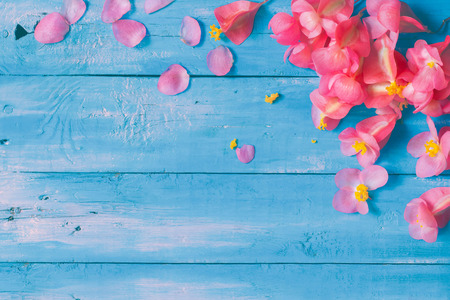 Pink flowers on blue wooden background with vintage tone. Banco de Imagens