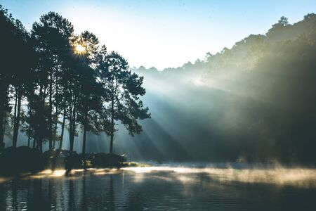 Beautiful nature lake and pine forest in the morning at Pang Ung(Pang Tong Reservoir) in Mae Hong Son Banco de Imagens