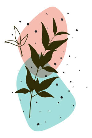 Vector botanical realistic poster, boho minimalistic wall art, abstract shapes, transparent effect Vector Illustration