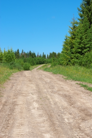 dirt road in the summer mountain hill photo