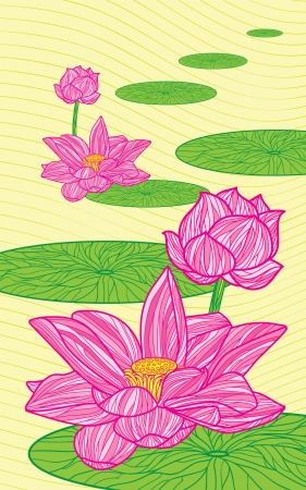Vector lotus line art - colorful illustration
