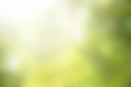 Abstract green blurred background for web design