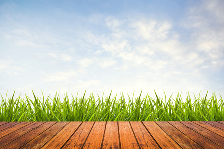 Fresh spring green grass with blue sky and wood floor