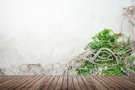 ツルのコンクリートの壁と木製の床の背景のテクスチャに成長