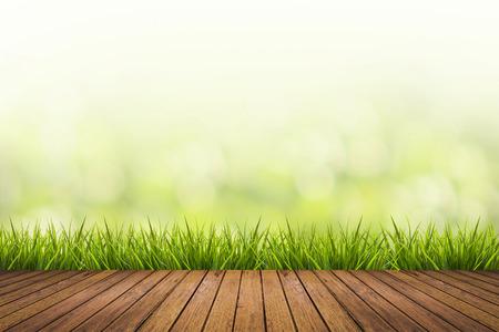 frescura: Hierba fresca del resorte con la naturaleza de fondo verde borrosa y piso de madera