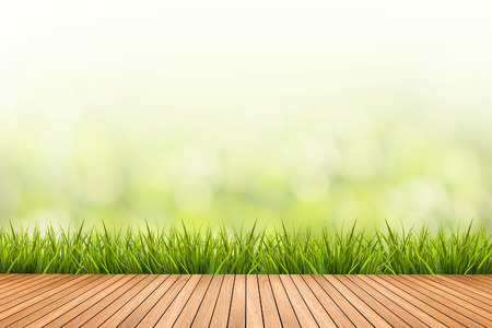 Fresh spring grass with green nature blurred background and brown wood floor Archivio Fotografico