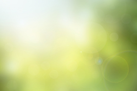 Abstract green nature blurred background with bright sunlight, flare and bokeh effect, use for backdrop or web design in environment concept
