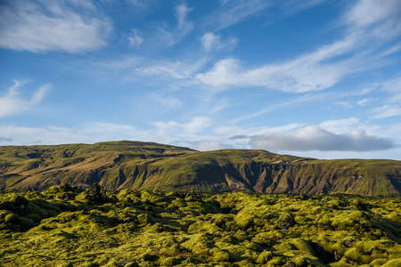 lava field: Eldhraun lava field moss cover on lava rock and mountain, beautiful volcanic landscape of Iceland Stock Photo