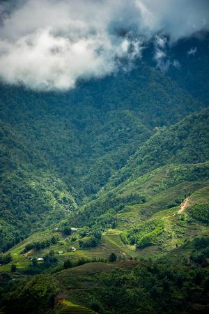 lao: Beautiful Fansipan mountain landscape and rice field terraced in rainy season of Sapa, Lao Cai, Vietnam