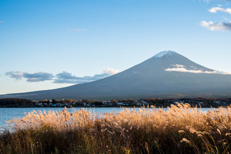 cloud capped: Beautiful view of Mount Fuji and field at Lake Kawaguchi in autumn, This mountain is an famous place of Japan