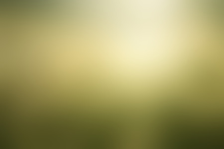 enviro: Abstract green nature blurred background with bright sunlight, use for backdrop or web design in spring environment concept