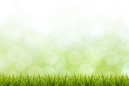 enviro: Fresh spring grass and green nature blurred background - use for display or design element in natural spring concept