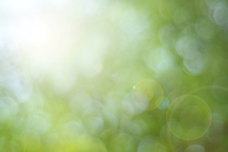 enviro: Abstract green nature blurred background with bright sunlight, flare and bokeh effect, use for backdrop or design element in spring environment concept Stock Photo