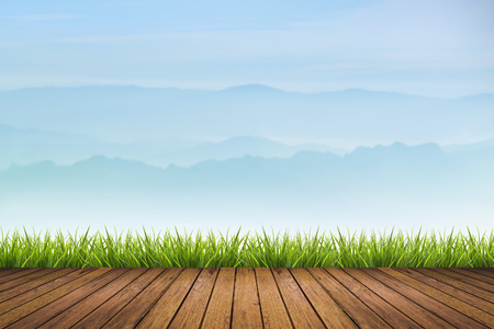 enviro: fresh spring green grass on brown wooden floor and blue mountain layer blurred background - can use for backdrop or display product in environmental concepts Stock Photo