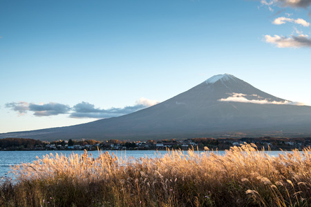 famous place: Beautiful view of Mount Fuji and field at Lake Kawaguchi in autumn, This mountain is an famous place of Japan