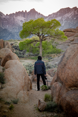 Asian man tourist and photogrpher holding camera looking at lone tree and Mount Whitney in Alabama Hills, Lone Pine, California, USA. Travel photography concept