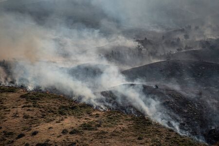 Wildfire or forest fire burning on the hill. Natural disaster on mountain.