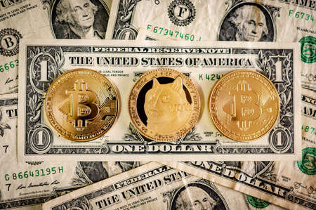 Gold Dogecoin and Bitcoin on dollar banknotes. Cryptocurrency and decentralized finance concepts Zdjęcie Seryjne
