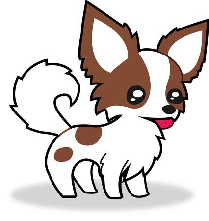 chihuahua puppy: Chihuahua