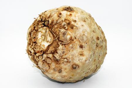 Celery head Apium isolated on white background