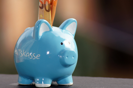 Piggy bank for the household budget