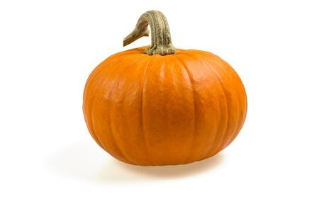 pumpkin: orange pumpkin
