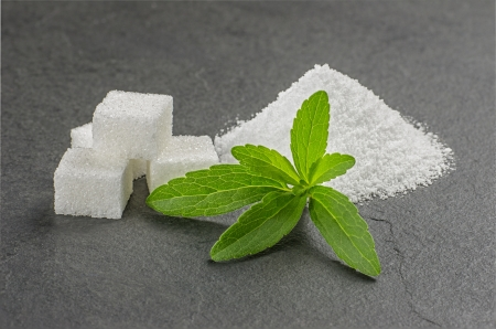 Stevia leaves with stevia powder and sugar cubes on a slate palte photo