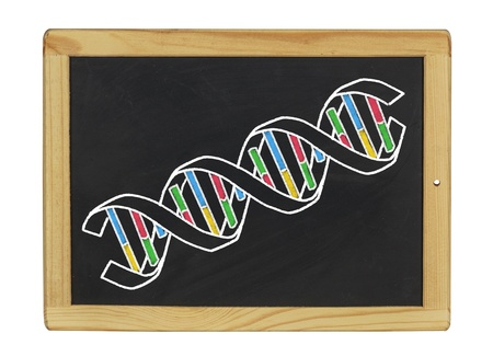 structure of DNA on a blackboard photo