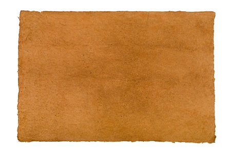 brown daphnepaper with leathery texture photo